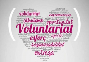 Dia Internacional Voluntariat 2